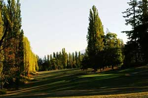 Fall colors at Discovery Bay Golf Course